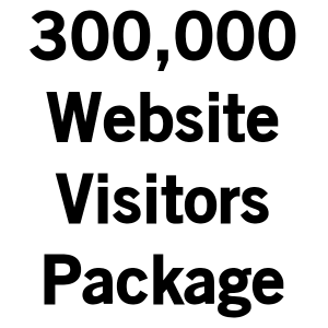 bitcoinsubscribers.com-buy-300000-website-visitors-package